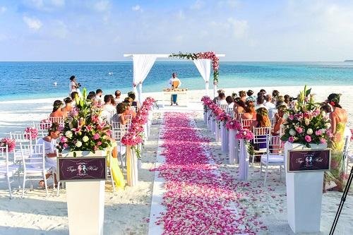 ورودی عروس داماد